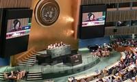 越南在提高妇女权能问题上取得多项成就
