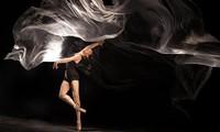 亚欧会晤国际当代舞蹈节在先后在河内和胡志明市举行