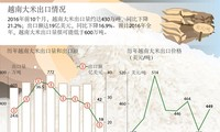 越南大米出口情况