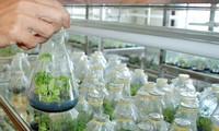 革新创新  成功实现农业创业