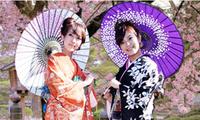 日本新年文化节即将在河内举行