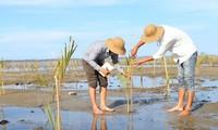 越南主动、积极参加东盟环保合作