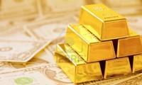 1月24日越南金价和股市情况