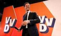荷兰首相吕特的自由民主人民党获得国会相对多数席位