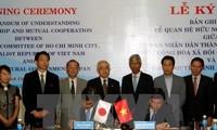 越南与日本推动在多个领域的深广合作