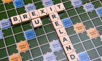 英国政府将公布关于脱欧谈判的立场