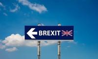 英脱欧:英国公民不想脱离欧盟