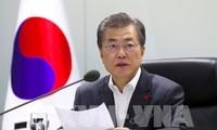 韩国媒体:韩国总统文在寅决心与越南加强关系