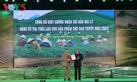 第三次木州高原绿茶节开幕