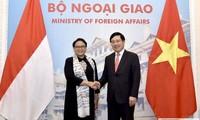 推动越南-印尼战略伙伴关系日益深入全面发展
