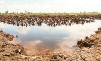 应对九龙江平原地区旱季和咸潮入侵座谈会举行