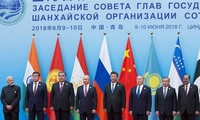上海合作组织支持基于国际法解决冲突