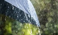在雨中听雨唱  听心唱