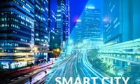 电子政务和智慧城市共同基础设施研讨会在芹苴市举行