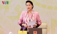 越南国会主席阮氏金银出席专职国会代表会议
