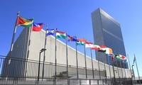 联合国继续强调其在国际新背景下的作用