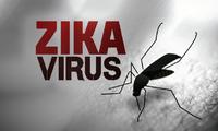 中国发现首个寨卡病毒感染病例