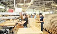 2018年越南林产出口约达93亿美元