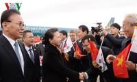 阮氏金银对韩国进行正式访问