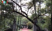 顺化独特的古寺——慈孝寺