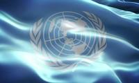 越南在联合国的地位再次得到肯定