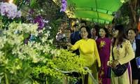 2019年己亥春节花卉节开幕