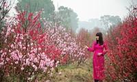 春节——温暖人心