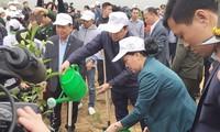 阮氏金银出席和平省梁山县植树节启动仪式