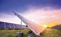 越南优先发展可再生能源