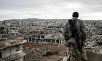 努力重建叙利亚
