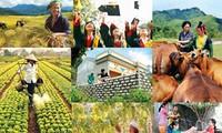 """""""不让任何人掉队""""——越南各项可持续发展项目的核心目标"""