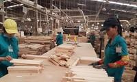 今年一季度  林产品在出口额达10亿美元以上商品中增幅最高