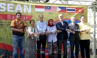 在阿根廷巴扎尔展销会推介越南文化