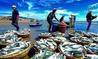 越南水产力争实现出口额达100亿美元的目标