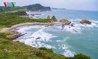 姑苏——东北海域的绿玉
