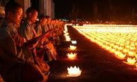 越南佛教教会与保护自然资源和生物多样性工作