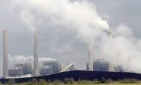联合国呼吁采取行动 响应世界环境日