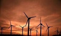 保障能源安全为可持续发展奠定基础座谈会举行