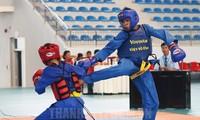2019年全国青年越武道锦标赛开幕