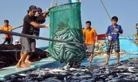 应用先进技术于可持续水产捕捞