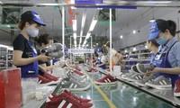 在EVFTA将很快获得通过的背景下 越南的机遇与挑战