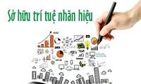 保护知识产权-提高越南品牌的竞争力