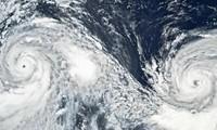"""台风""""利奇马"""":中国近100万人被疏散"""