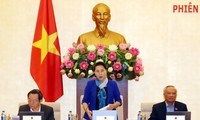 越南14届国会常委会36次会议审议《规划法》一些条款说明决议草案