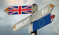 """英脱欧:欧盟对与英国的""""离婚案""""观点一致"""