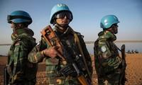 PBB mengutuk serangan teror di Mali