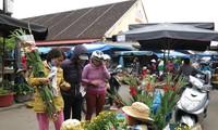 Warga di berbagai kabupaten pulau dengan ramai menyongsong Hari Raya Tet