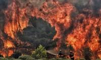 Grèce: Le bilan provisoire des incendies monte à 79 morts