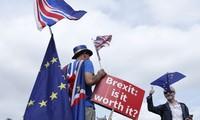 Des conservateurs partisans d'un Brexit dur veulent renverser Theresa May