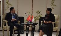 ZEE : le Vietnam et l'Indonésie poursuivent leurs négociations
